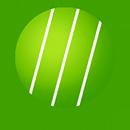 web_mlp_icon